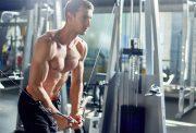 bodybuilders offseason